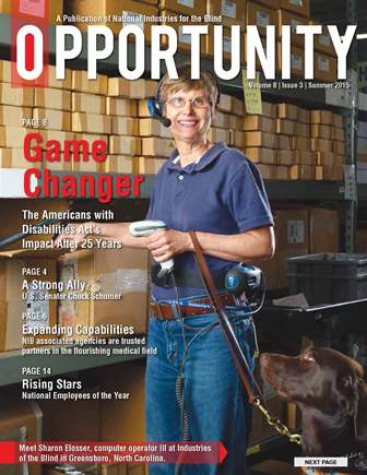 Summer Opportunity Cover